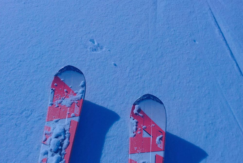 alquiler-de-esqui-snow